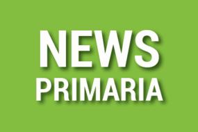 NEWS PRIMARIA