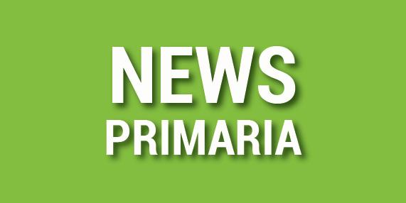 NEWS SCUOLA PRIMARIA DEL 19 NOVEMBRE 2016